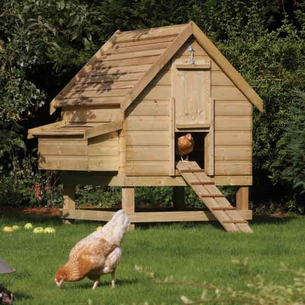 Rowlinsons Large Chicken Coop Garden Hen House